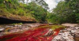 رودخانه های رنگی جهان